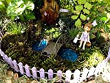 12 piece Purple Miniature Fairy Garden ACCESSORY SET - Fence, butterfly stake made with Swarovski crystal, light stakes, flower lanterns, fairy dust, reversible believe sign / fairies welcome sign