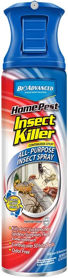 BioAdvanced 701310A 687073013108 Home Pest Insect Killer, 15 oz, Continuous Spray Aerosol