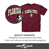 Campus Colors Florida State Seminoles Adult Arch