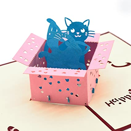 Amazon Pop Up Birthday Card Dreamlevel 3d Cute Cat In Box