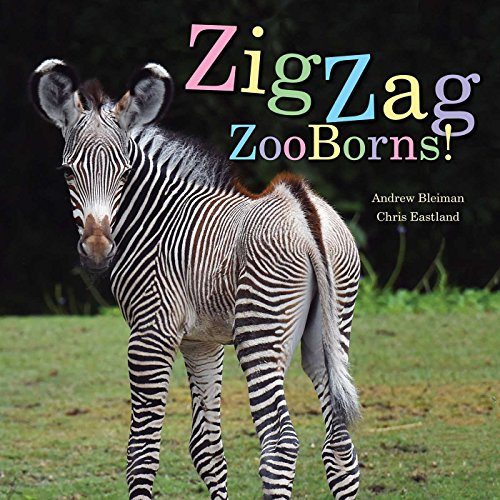 (ZigZag ZooBorns!: Zoo Baby Colors and Patterns)