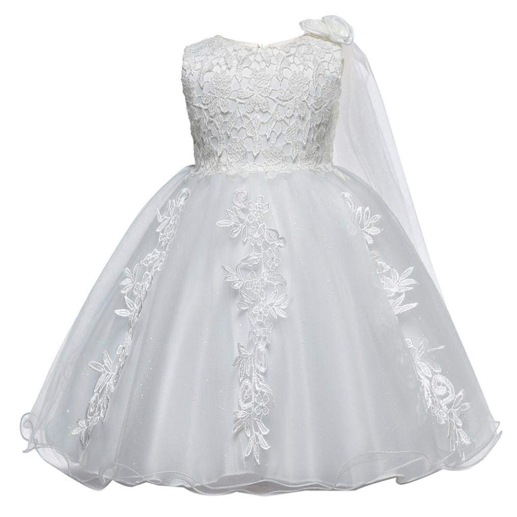 Baby Girls Princess Wedding Dress 0-18 Months,Infant Toddler Girls Lace Tutu Tulle Gown Birthday Party Dress (6-12 Months, White)
