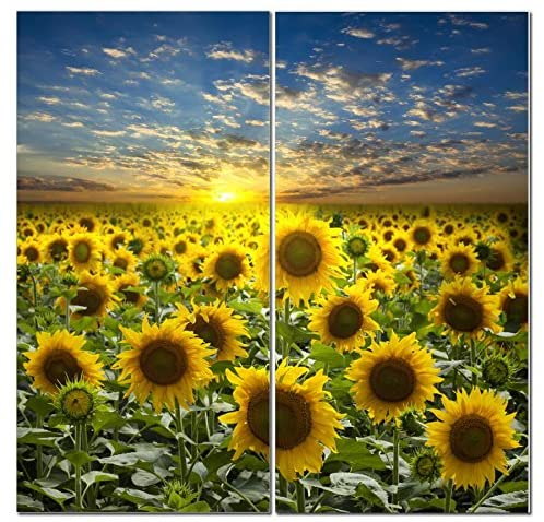 Sunflower Canvas Wall Art Decor Modern 24x24 Hanging Flower Field 2 Panel Print Photograph Decorative Painting Artwork For Kitchen Bedroom Office Living Room Home Decor Gift For Men Women Posters