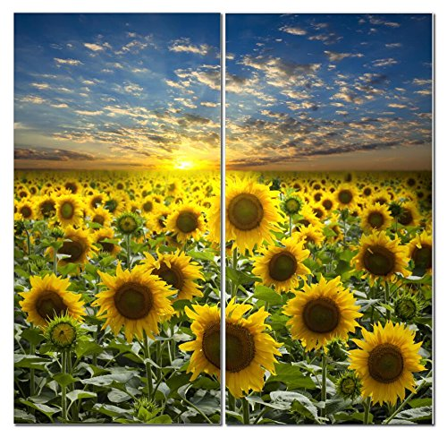 Sunflower Photograph Decorative Painting Home product image