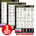 "Eazy How To Multi Pack Bundle Exercise Workout Poster BIG 28 x 20"" Train Endurance, Tone, Build Strength & Muscle Home Gym Chart - Premium"