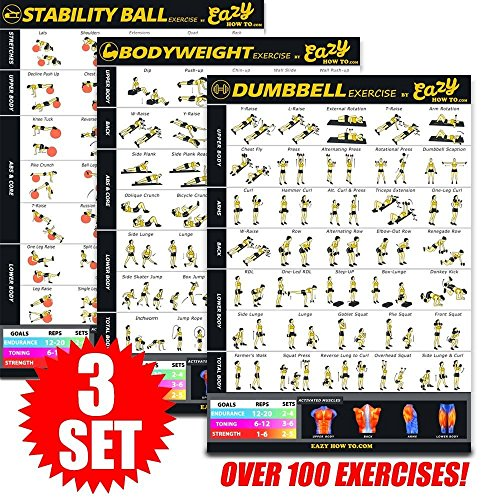 Eazy How To 3 Pack Bundle Exercise Workout Poster BIG 28 x 20