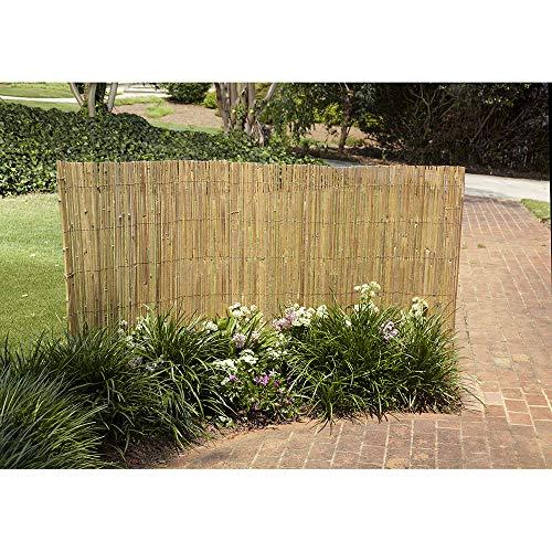 - Jur_Global 1/2 in. Outside Peel Bamboo Fence, 4 ft. H x 8 ft. L