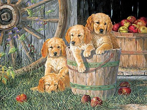 Puppy Pail