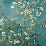 Diy oil painting, paint by number kit- worldwide famous oil painting Apricot Blossom by Van Gogh 1620 inch.