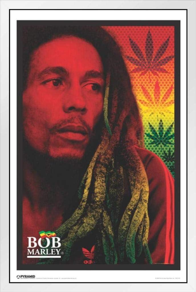 Pyramid America Bob Marley Face Framed Poster 14x20 inch