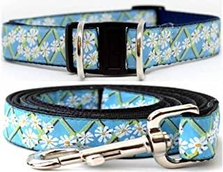 product image for Diva-Dog 'Daisy' Dog Collar with Safety Buckle