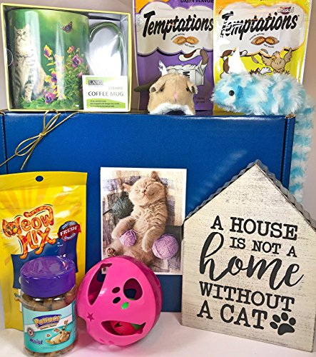 Cat Gift Box Basket for A Favorite Feline Fur Baby and His/Her Guardian - Send These Treats, Toys, and Mug to a Furry Cat/Kitten/Kitty Friend and Owner! (Best Cat Subscription Box)