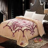BEIZLSS Pastoral style floral flowers scratched/blankets Polyester-D 200x230cm(79x91cm)