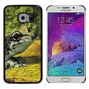 Be Good Phone Accessory // Dura Cáscara cubierta Protectora Caso Carcasa Funda de Protección para Samsung Galaxy S6 EDGE SM-G925 // Frog Yellow Nature Forest