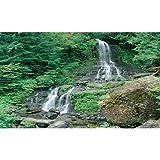 Biggies WW-WFL-100 Window Well Scene – Waterfall 100 in. For Sale