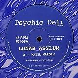 Lunar Asylum - Water Margin / We Know Nothing - Psychic Deli - PSI-08
