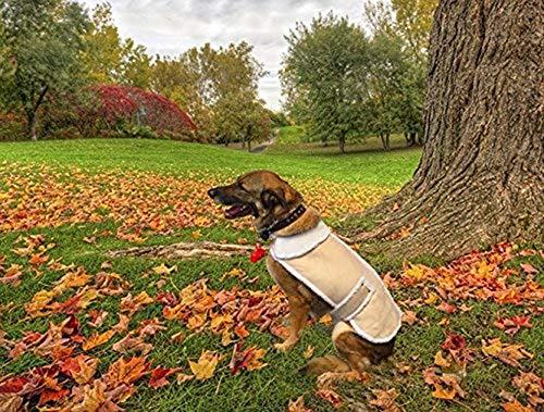 Shearling Fleece Winter Dog Jackets (XX-Large)