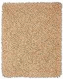 Anji Mountain AMB0654-0058 Silky Shag Area Rug, Beige, 5 x 8-Feet