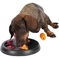 Trixie 32026 Dog Activity Flip Board Jeu de stratégie pour chien, 23 cm