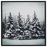 Modern Black and White Print of Forest Snow, Black Frame, 30'' x 30''