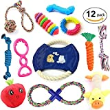 Dog Toys Set,Pets Gift Set, Ball, Cotton Rope Toy, Chew Squeaky Toys and Training Toy for Small or Medium Dog by IN HAND