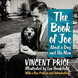 The Book of Joe Audiobook
