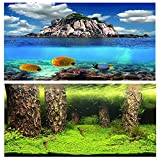 """9067 19.3"""" x 48"""" Double Sided Fish Tank Aquarium Background Forest / Three Fishes"""