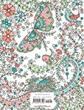 Posh Adult Coloring Book: Hymnspirations for Joy