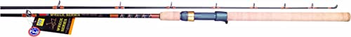 Tica CLGA Wreck Fishing Rod Serie
