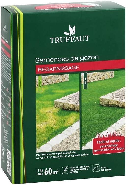 Truffaut Gazon Regarnissage 1 Kg Amazonfr Jardin
