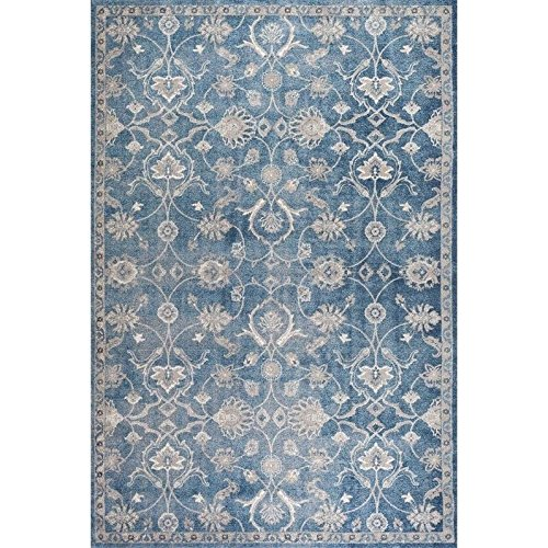 safavieh-sofia-collection-sof386c-vintage-blue-and-beige-area-rug-51-x-77