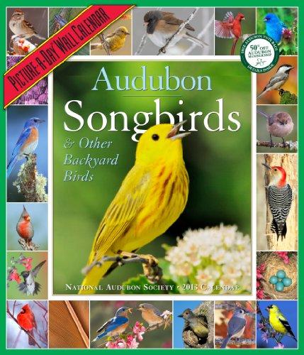 Audubon Songbirds & Other Backyard Birds Calendar 2013 National Audubon Society