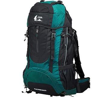 mochilas montaña Mochila al aire libre 60L del alpinismo mochila de viaje bolsa de viaje Mochila Mochilas de marcha (Color : Azul cielo , Tamaño : 60L) : ...