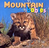 Mountain Babies, Kristin McCurry, 1559719400