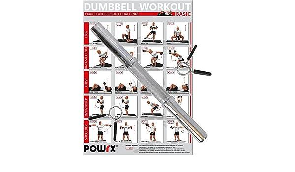 POWRX - Barra de mancuerna cromada barra de pesas con cierre de resorte - 38 cm de largo - para discos con 30 mm de diámetro - Incluye PDF workout: ...