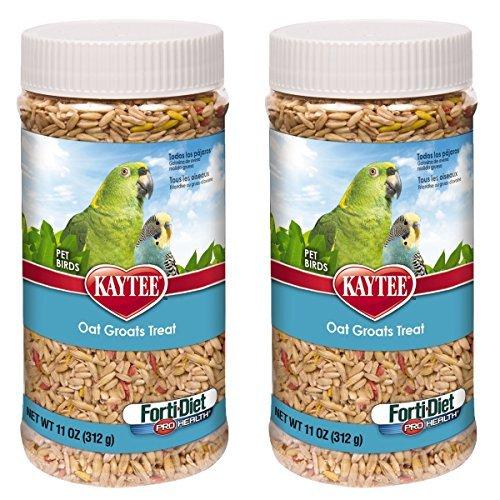 Kaytee Forti-Diet Pro Health Oat Groats Bird Treat, 22 oz by Kaytee