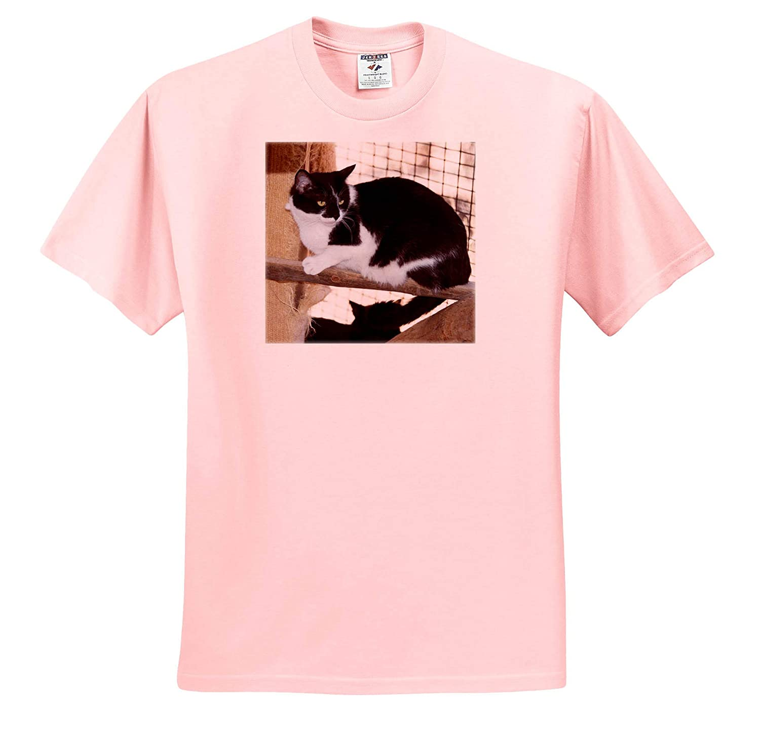 Kitty Cat Black and White T-Shirts A Black and White Cat Sitting on a Branch in Kanab 3dRose Jos Fauxtographee
