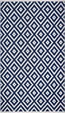 Fab Habitat Reversible PET Rugs - Handwoven | Indoor or Outdoor Use | Stain Resistant, Easy to Clean Weather Resistant | Chanler - Blue (2' x 3')