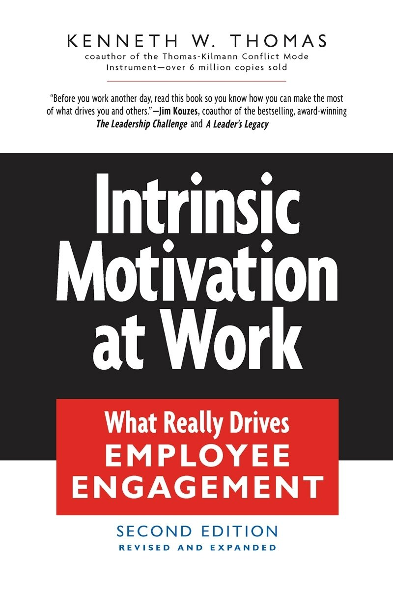 Intrinsic Motivation at Work: What Really Drives Employee Engagement