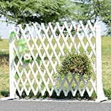 WSSF- Flower Rack Anti-Corrosion Solid Wood Telescopic Fence Grid Succulents Flower Pot Shelf Free Standing Pull Net Climbing Rattan Flower Stand (Color : White, Size : 8034cm)