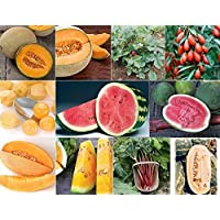 David's Garden Seeds Collection Set Fruit NEP2233 (Multi) 10 Varieties 800 Plus Seeds (Open Pollinated, Heirloom, Organic)