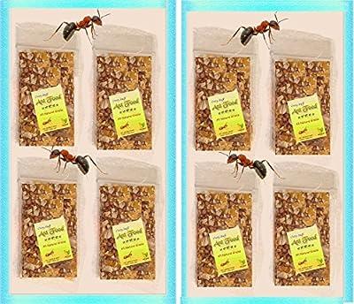 Ant Food (Crazy Stuff)