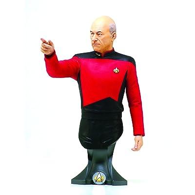 Titan Merchandise Star Trek: Captain Jean-Luc Picard Mini-Bust: Toys & Games