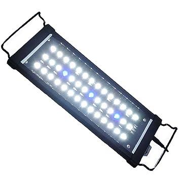 Etime Aquarium Beleuchtung LED Aufsatzbeleuchtung Aquariumlampe ...