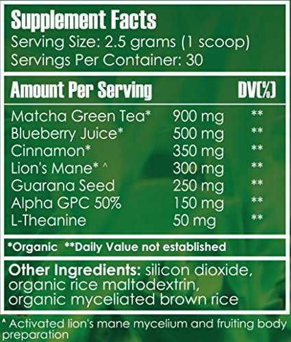 Natural Focus Drink Mix Organic Matcha Green Tea