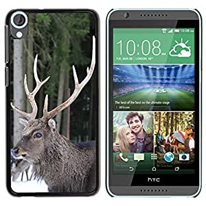 Super Stella Slim PC Hard Case Cover Skin Armor Shell Protection // M00105938 Hellenthal Hirsch In The Free Antler // HTC Desire 820