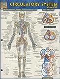 Circulatory System Advanced, BarCharts, Inc., 1423220307