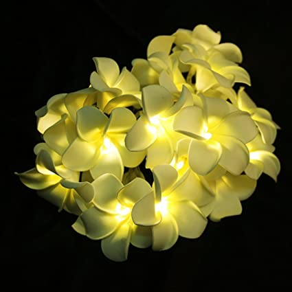 Amazon mofeng holiday led string fairy lights artificial mofeng holiday led string fairy lights artificial flowers hawaii egg plumeria flower warm white20 mightylinksfo