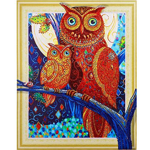 Birdfly Partial Drill Cross Stitch Kits 5D DIY Crystal Diamond Owl Painting Kits for Adults Children (40x30cm, E)