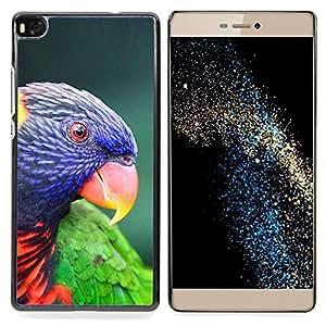 /Skull Market/ - Parrot Parolee Tropical Exotic Bird For HUAWEI P8 - Mano cubierta de la caja pintada de encargo de lujo -